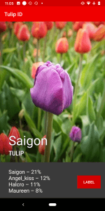 Tulip App