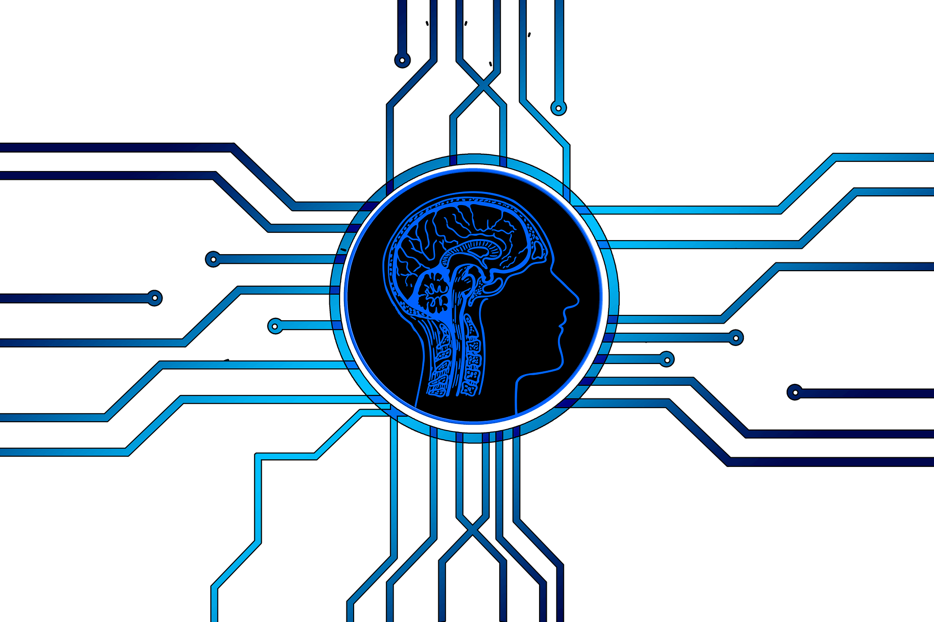 Essential Insights into Artificial Intelligence